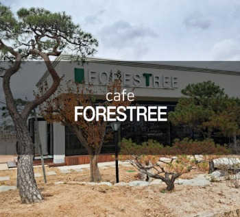 FORESTREE